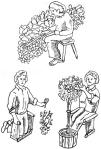 Gardening Healthily